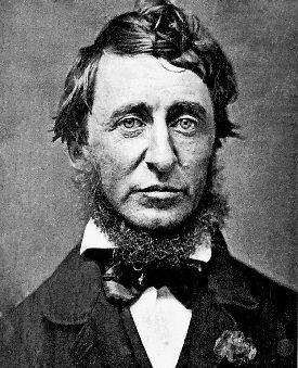 275px Henry David Thoreau