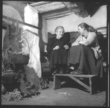 COLUMN SINGIN Field Trip-Elizabeth Cronin