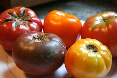 Heirloom_tomatores