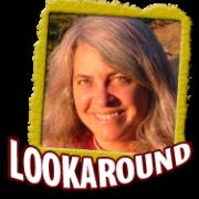 logo_lookaround