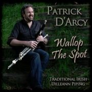 patrick_darcy_-_wallop_the_spot